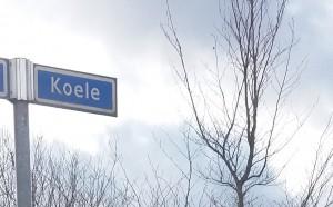 Koele, Akkie