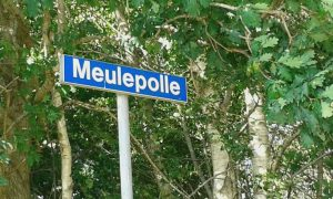 Meulepolle, Buil, Annie